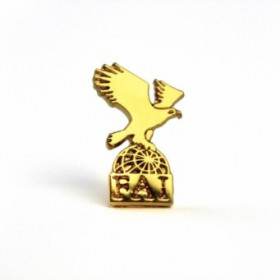 FAI Official Pin